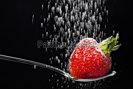 azucar fruta caida fresa baya cayo