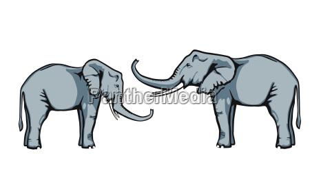 amigable elefante confianza cada