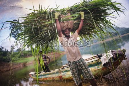 portrait of a farmer working in