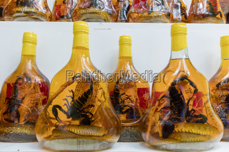 scorpion and snake brandy for sale