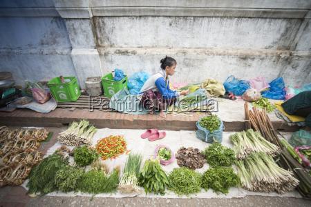 laos luang prabang market fegetable