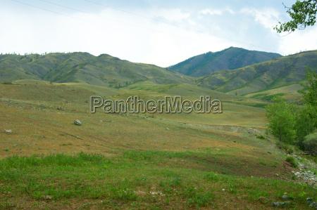 hermoso bueno paseo viaje arbol montanyas